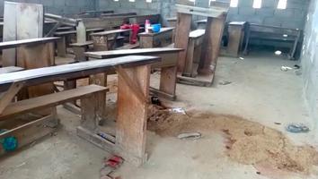 Hombres armados irrumpen en escuela y matan a seis niños en Camerún