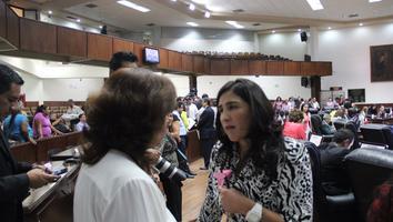 Rosa Isela de la Rocha, diputada del Partido de la Revolución Democrática.