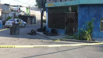 Cae cable de alta tensión en la colonia Pablo González; mueren dos gatos y un perro