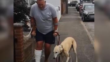 Hombre gasta mucho dinero en médicos para su perro cojo; descubre que sólo lo imitaba