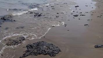 Reportan manchas de Chapopote en más de 10 kilómetros de playas de Veracruz