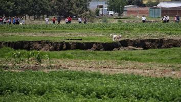 Planean rescate de perritos atrapados dentro de socavón en Puebla