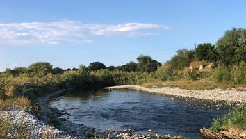 Localizan cuerpo de un hombre de la tercera edad en el Río Santa Catarina